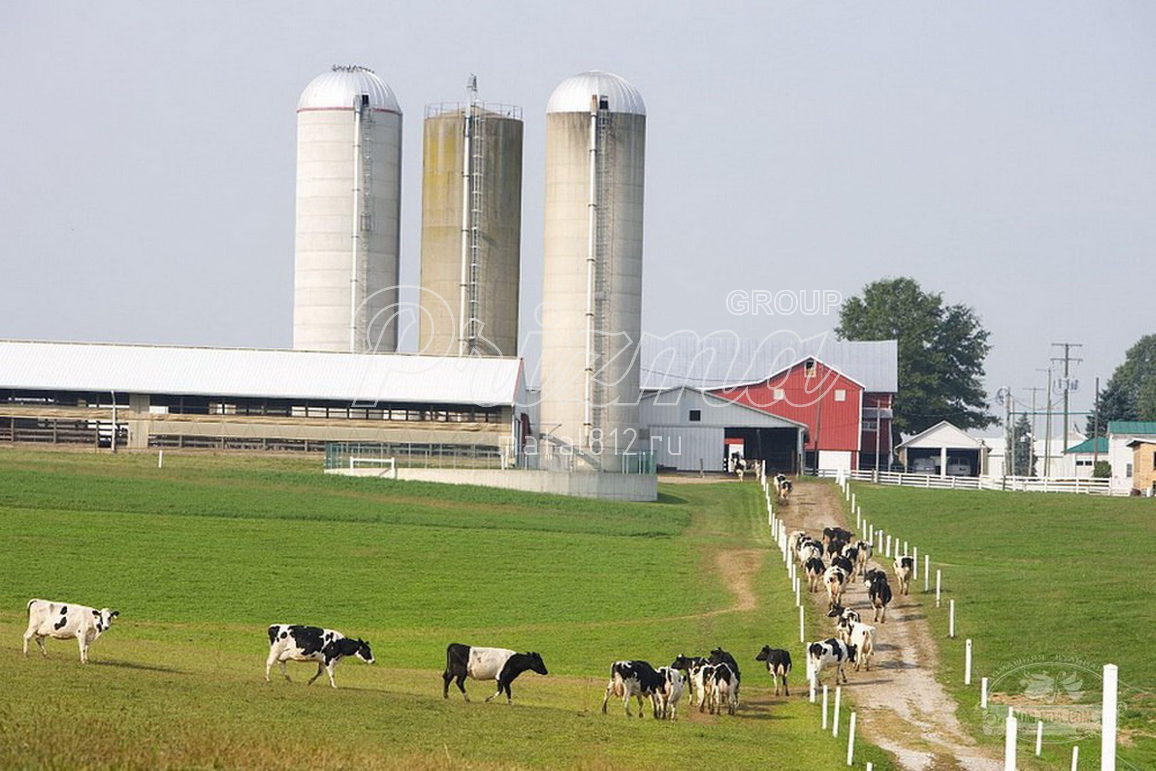 Заказать сельско-хозяйственные здания
