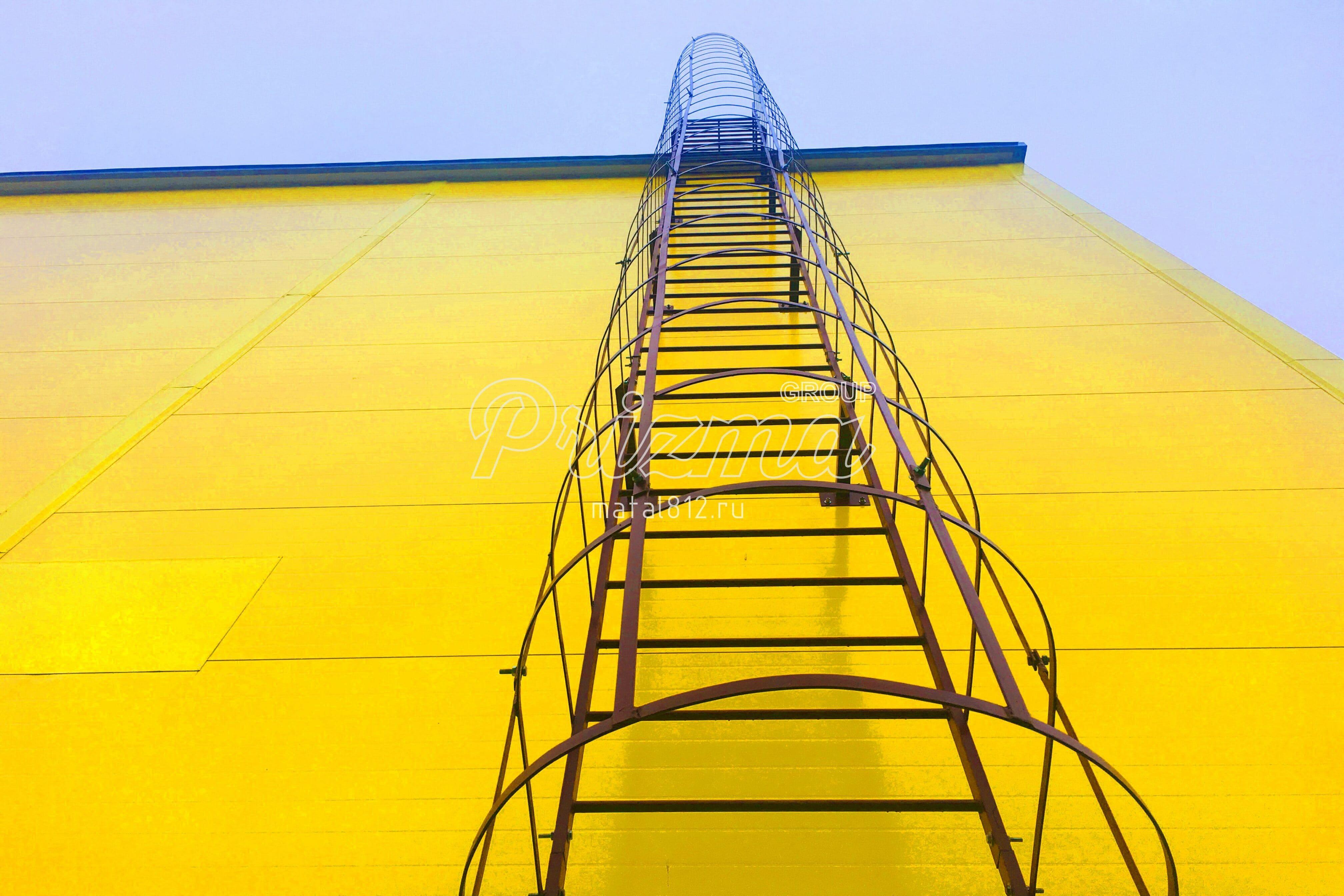 Вертикальная пожарная лестница П1-2 с ограждениями